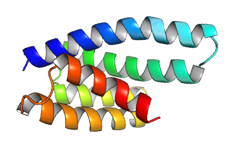 Kuhlman Lab